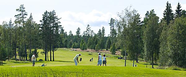 img_vht_golf_3