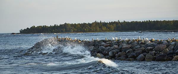 img_vht_uppl_fiske